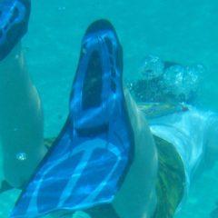 Effektiver svømmetræningen med et par svømmefødder
